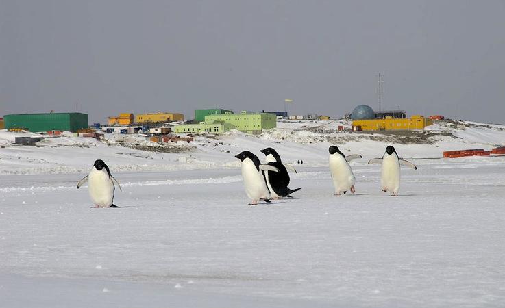 Die australische Antarktis-Station Davis liegt in der Ostantarktis, driekt an der Küste der